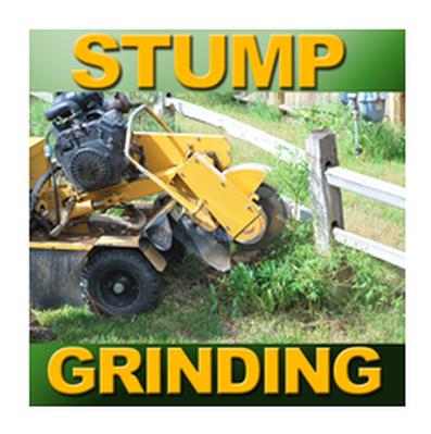 Stump Grinding Cumming ga