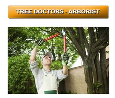 Tree Removal Cumming Georgia